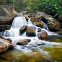 amem_creekfall