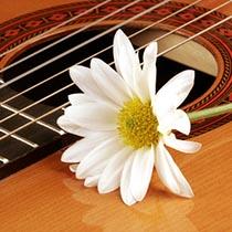 amem_guitar1