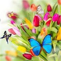 amem_springtime