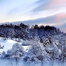 amem_winter.jpg