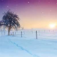 amem_winterscene.jpg