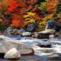 amem_fall_creek.jpg