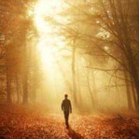 amem_walking.jpg
